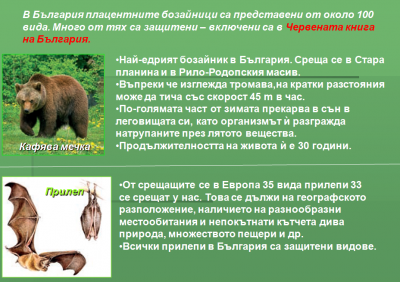 Тема: Плацентни бозайници - Изображение 5