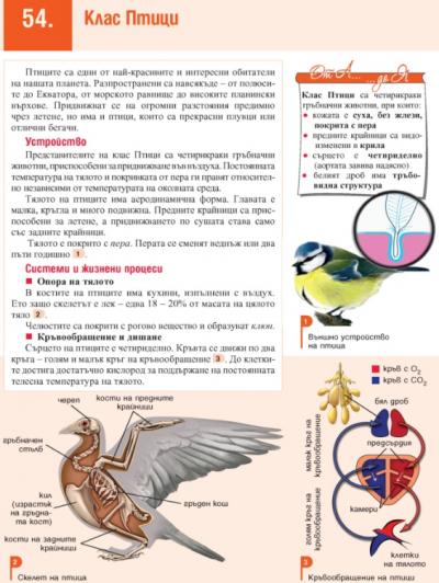 7 клас ИУЧ-Биология и ЗО 22.05.2020г 1