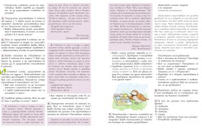 V клас  Български език /12.06.2020г / 2
